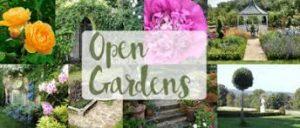Austwick Open Gardens @ Austwick Village